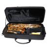 Syrinx SAS501 Student Alto Saxophone