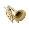 Syrinx SCT201 Student Cornet with Copper Leadpipe