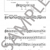 The Young Flute Player - Karen North - Book 2